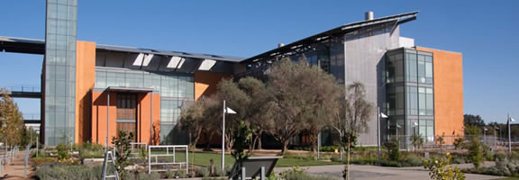 The Robert Mondavi Institute