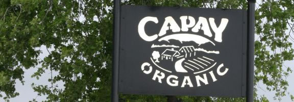 Capay Organic Farm Tour, May 8th