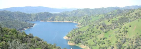 Looking for a fun way to exercise? Head to Stebbins Cold Canyon Trail at Lake Berryessa. This isn't a place to bring the toddlers in the backpacks or strollers. This is a real hike -- think burning buns and toned calves. There are two gates leading to different trails that connect as part of the 4-mile loop. You can pick your poison.