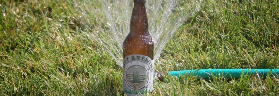 Summer, Sprinklers and Sipping